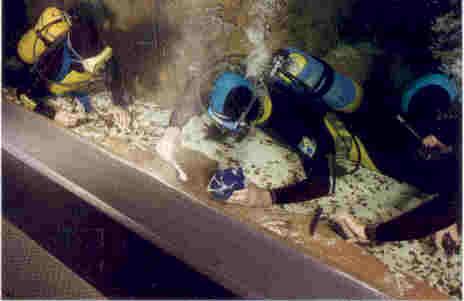 Swimming Pool Underwater Epoxy Repair 603 435 7199